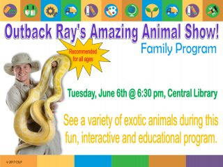 Outback Ray Animal Show @ Central Library | Millersburg | Ohio | United States