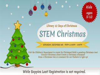 STEM Christmas @ Central Library | Millersburg | Ohio | United States